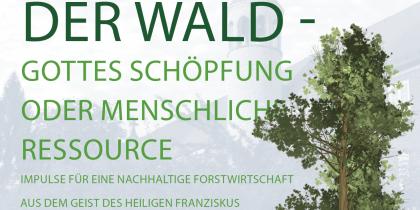 Klostergespräche zum Thema WALD am 2. Juli